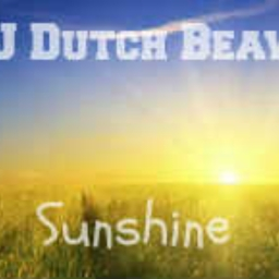 Cover of track Sunshine | DJ Dutch Beaver - Summer 2016 by DJ Dutch Beaver