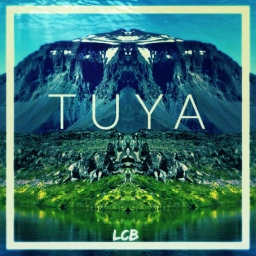 Cover of track Tuya by LcB