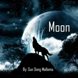 Cover of track Moon by sundongmollema