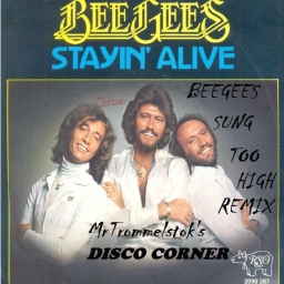 Cover of track Disco Fevah (Beegees Sung Too High Remix) by mrtrommelstok