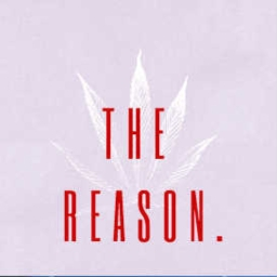 Cover of track The Reason. by Lil Mc$ay