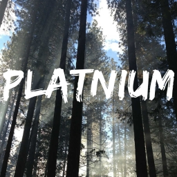 Cover of track Platnium by Rock3tBox
