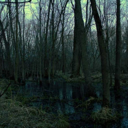 Cover of track Swamp theme by Cristian K. by Kalinoski