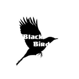 Cover of track Black Bird (Single) by DAHN