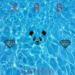Cover of track P A N D A by Xavi