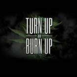 Cover of track turn tf up by DJ___MELOBEATS