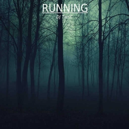 Cover of track RUNNING - DJ TeaZ by Raphaël Poulin