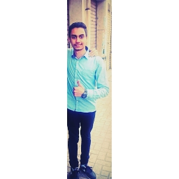 Avatar of user amin_mohamed