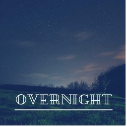 Cover of track Overnight by Yung.Rico.Beatz