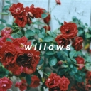 Cover of track willows by reyd.
