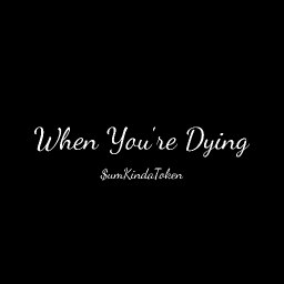 Cover of track When You're Dying by $umKindaToken