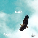 Cover of track Soar by Sebastian