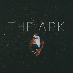 Cover of track The Ark by reyd.