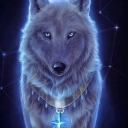 Avatar of user spiritwolf13