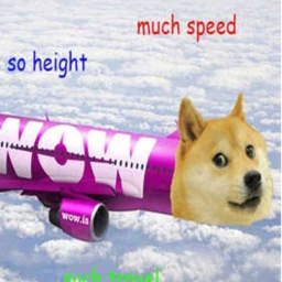 Cover of track Doggy Airlines by Walmart_Galaxy