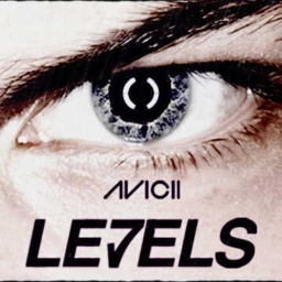 Cover of track Levels - Avicii (Metal Edition- lucs Remix) by DJ Khliq