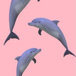 Cover of track dolphin$ (interlude) Remix by DQTHEGAWD