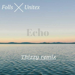 Cover of track Echo (Thizzy remix) by Thizzy