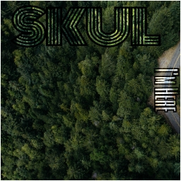 Cover of track I'm Here by s k u l