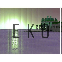 Cover of track S.H.I.N. by EKO