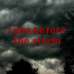 Cover of track calm before the storm by Nikaloop