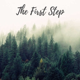 Cover of track The First Step by MJT