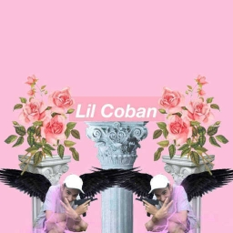 Cover of track 02 sad goat by Lil Coban