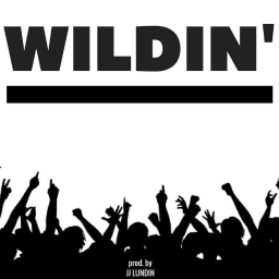 Cover of track WILDIN' by JJ LUNDIN (FL)