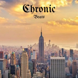 Cover of track We Run It by Chronic Beats