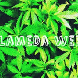 Cover of track dj vellor - alameda weed (remix) by vellor