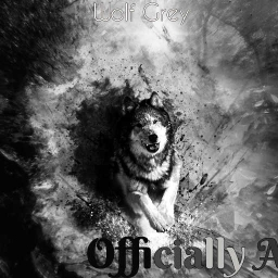 Cover of track Wolf Grey by Officially Ace
