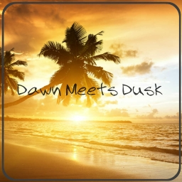 Cover of track Dawn meets Dusk - Light & MONO_TONUS. by Light