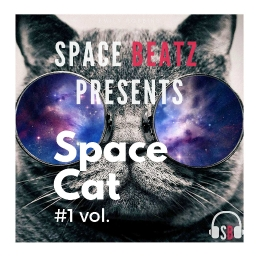 Cover of track Space Cat #1 by Majax_Ahmed_Mawia