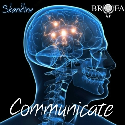 Cover of track Communicate by Skankline