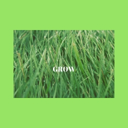 Cover of track GROW by shesasong