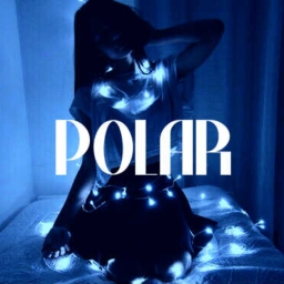 Cover of track Polar by xDiosa