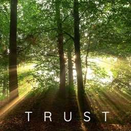Cover of track Trust by Recompense