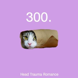 Cover of track 300 (HTR Remix) by Head Trauma Romance