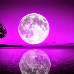 Cover of track Purple moon (Sygo Remix) by Sebastian