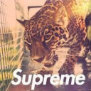 Cover of track SUPREMEGOD by RichlandPCartel™✪