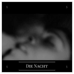 Cover of track Die Nacht by {:::Dïzäyä::Ränkönë:::}