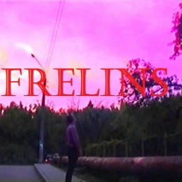 Cover of track INTRO by freliNs