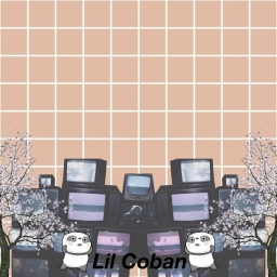 Cover of track shepherd boy by Lil Coban