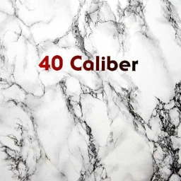 Cover of track 40 Caliber by J FRE$CO