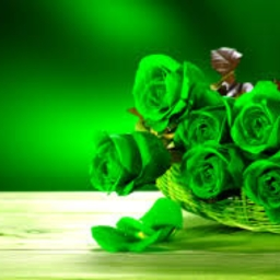 Avatar of user GreenFlowers
