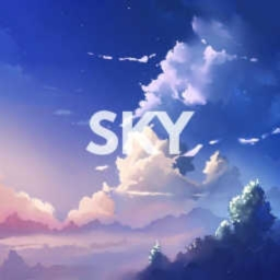 Cover of track ??? by Sky.