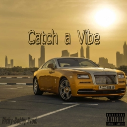 Cover of track Catch A Vibe by Ricky-Bobby Prod.