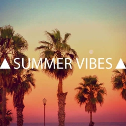 Cover of track Summer Vibes By The Playlist by The Playlist
