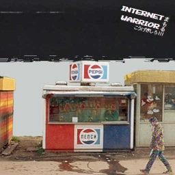 Cover of track Internet In a Nutshell by Alicia Walnuss