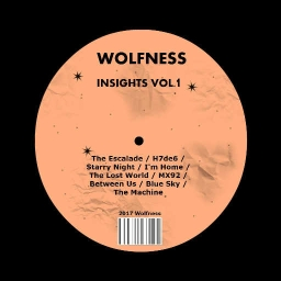 Cover of track MX92 by Wolfness